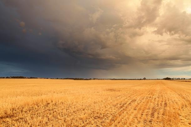 Wheatbelt storms