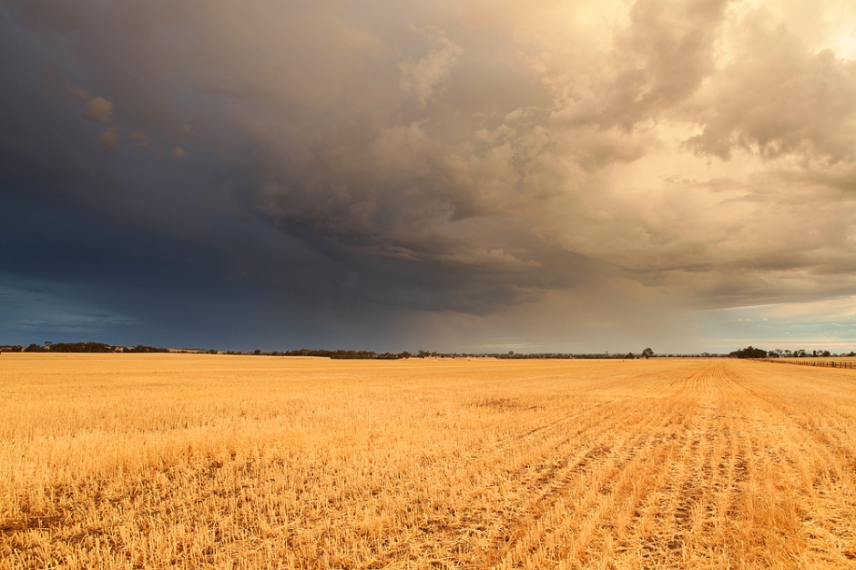 Wheatbelt storms