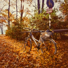 Munich-bike