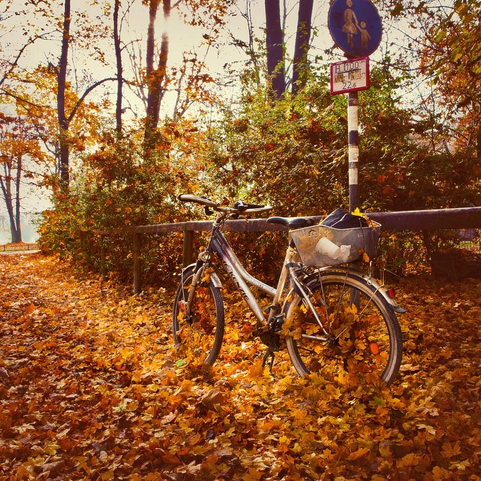 Munich-bike