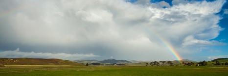 NZ-7206
